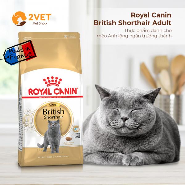 royal-canin-british-shorthair-adult-400g-2vetpetshop