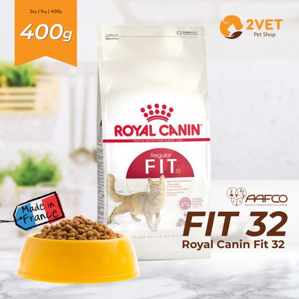 royal-canin-fit-32-goi-400g