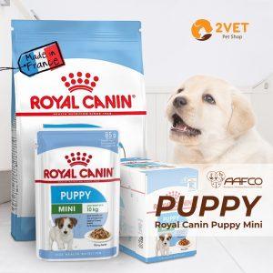 royal-canin-mini-puppy-cac-loai
