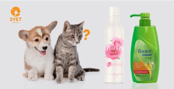 sữa tắm phải phải phù hợp cho chó mèo