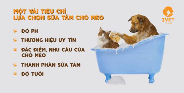 tiêu chí lựa chọn sữa tắm cho cho mèo